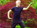 Tai Chi for Arthritis and Fall Prevention - Extension Movements
