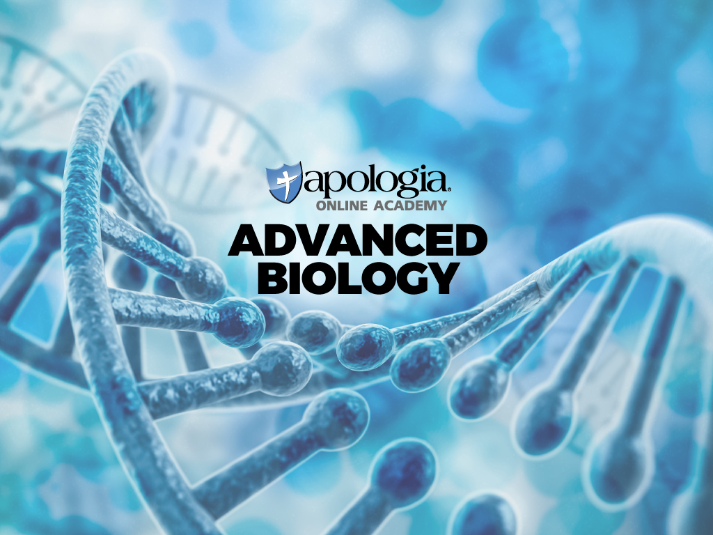 30. ADVANCED BIOLOGY: THE HUMAN BODY (Option 1) $638*