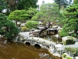 Fluid Tranquility: Fundamentals of Water Garden Design (New) - Plymouth