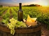 New Hampshire Winery Adventure