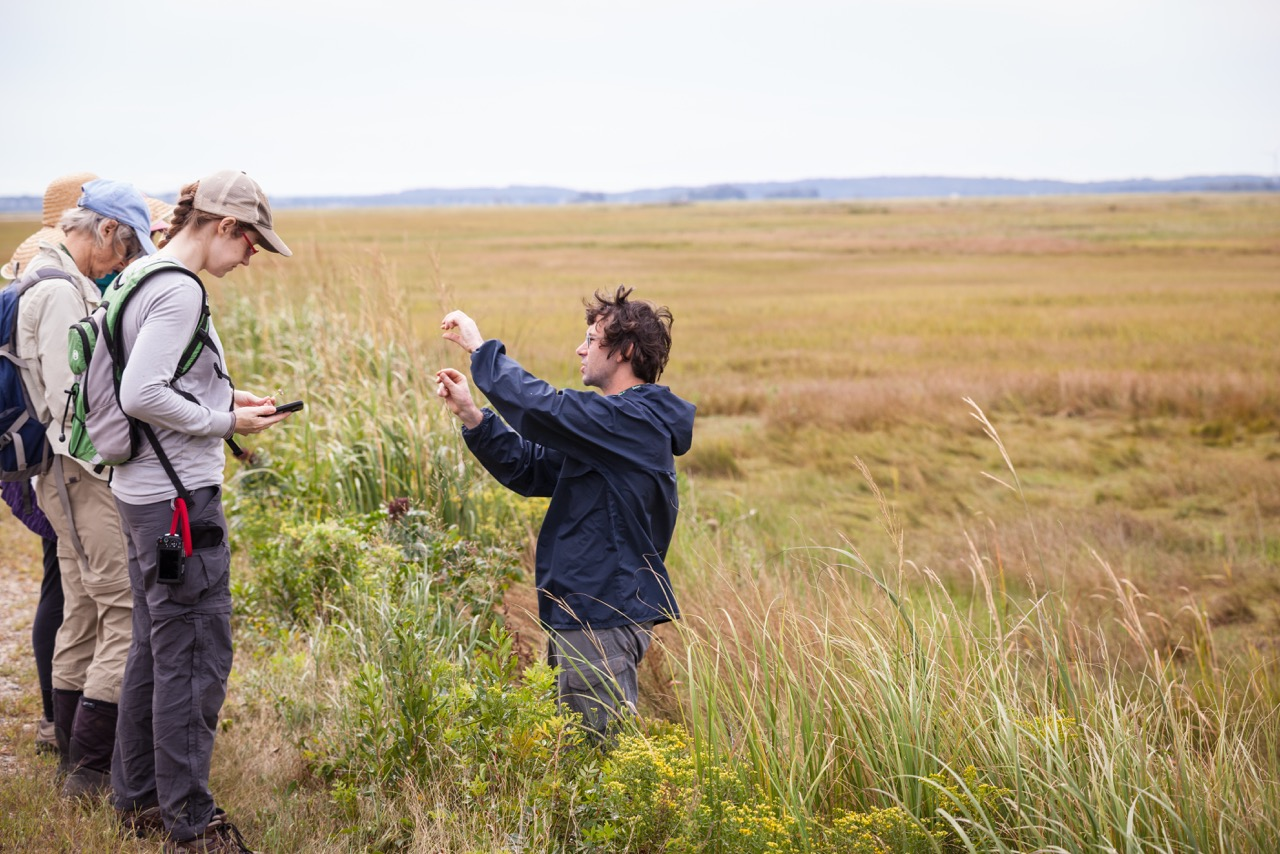 Native Plant Conservation in the 21st Century