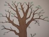 Genealogy Hands-On Workshop: FamilySearch.org