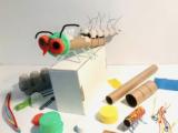 Japanese BugBots