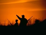 Hunter Safety: Firearm Skills and Exam Day