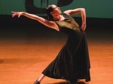 Flamenco Foundations Dance Workshop