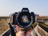Digital Photography I