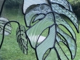 """EC-09-09/16/23 Stained Glass """"Unusual Monstera Leaf"""""""
