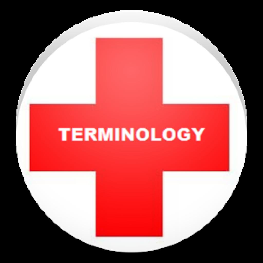 Medical Terminology Series