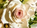 Cake Decor Flower Fun with Fondant  - Watertown