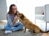 Indoor Activities for You and Your Dog