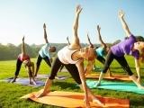 Hatha Yoga: Beginner