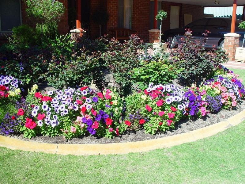 Original source: https://upload.wikimedia.org/wikipedia/commons/thumb/7/79/Flower_garden_%281%29.jpg/1280px-Flower_garden_%281%29.jpg
