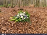 Natural Burial and Green Cemetaries