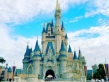 Thinking About a Trip to Disney World?