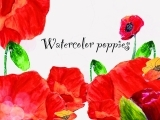 Watercolor Poppies with Kellie Chasse!