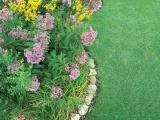 Gardening In the Shade - Beyond Hostas - Litchfield