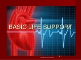 Basic Life Support for Healthcare Providers Recertification