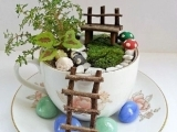 Karen Rossi Teacup Fairy Gardens - R7 Winsted