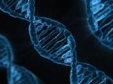 Human Biology with Lab (Interest List)