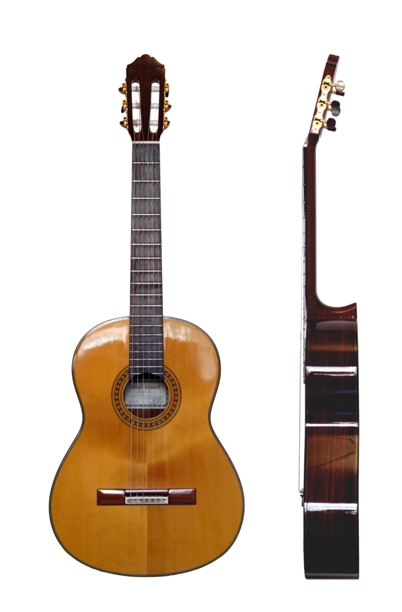 Original source: http://upload.wikimedia.org/wikipedia/commons/6/6e/Classical_Guitar_two_views2.png