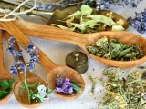 Everyday Medicinal Herbs/Plants