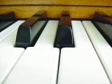 Piano 102