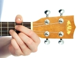 Play the Ukulele!
