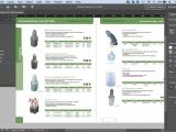Adobe InDesign Essentials ONLINE