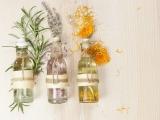 Make & Take Essential Oils: Cold Season - Augusta