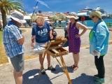 IN 609JS Plein Air Painting in Bermuda with James Toogood