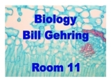Biology Lab/Fall