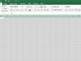 Microsoft Excel 2016 - Intermediate (Mac & PC)
