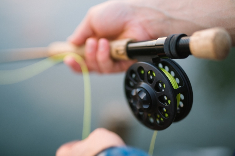 Original source: https://storage.needpix.com/rsynced_images/fly-fishing-1149502_1280.jpg