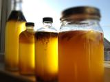 Fermentation Series: Kombucha