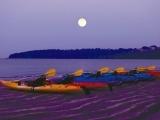 Moonlight Kayak Outings - Section II