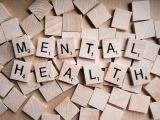 Mental Health Support Specialist (MHSS)
