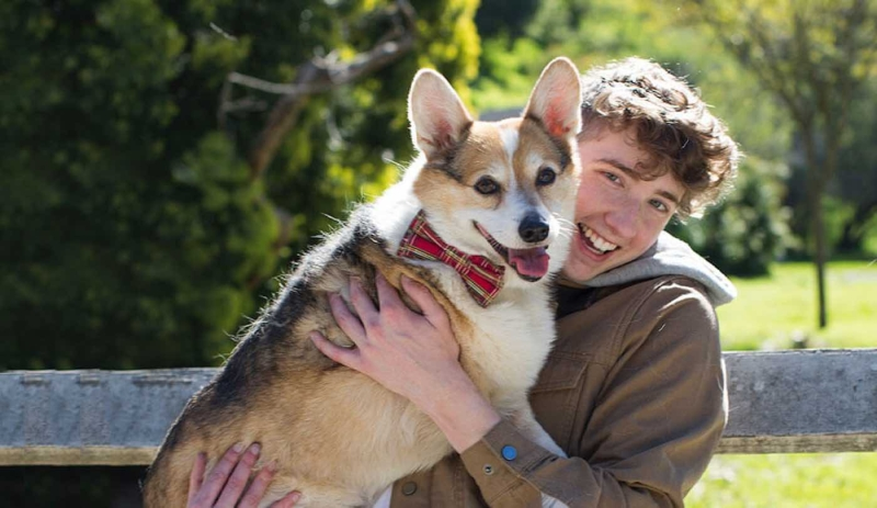 Original source: https://www.goodnewsnetwork.org/wp-content/uploads/2019/04/Matt-Nelson-and-Corgi-GoFundMe-Heroes.jpg