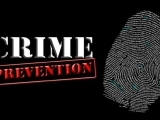 506S20 Crime Prevention