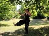 Tai Chi - For Arthritis and Fall Prevention 2 - Online