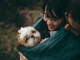 Dog Grooming - Lesson 1, Bonding & Calming