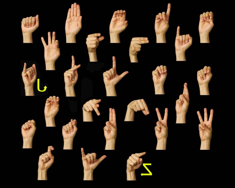 Original source: http://www.lifeprint.com/asl101/images-layout/signlanguage1280x1024.jpg