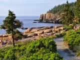 Acadia National Park: How to Get a Job! F17
