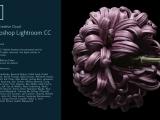Adobe Lightroom Classic CC for Desktop