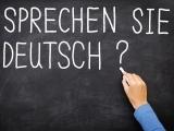 German, Beginner 1