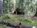 Bushcraft: Surviving in the Wild