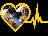 CPR Adult & Infant Certification Bundle