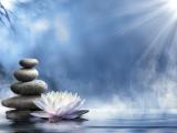 Meditation for Interpretation '20