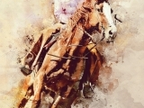Louisa Marriasdottir and Icelndig Horses (Online)