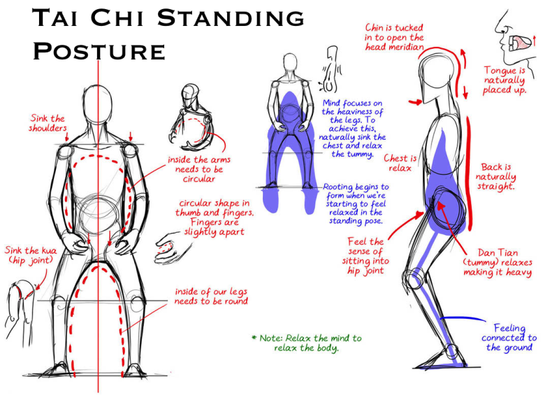 Original source: http://www.trusthealthservice.com/images/posture1.png