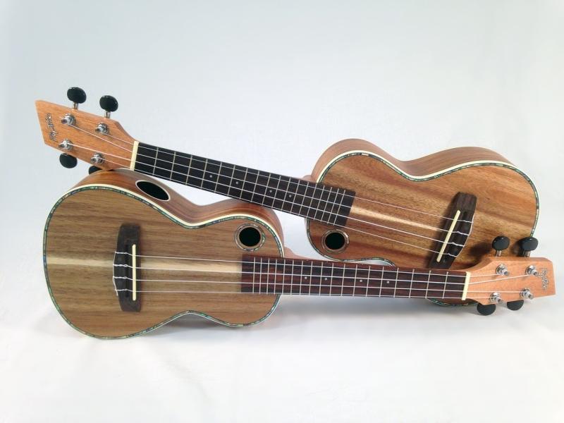 Original source: https://storage.needpix.com/rsynced_images/ukulele-814279_1280.jpg